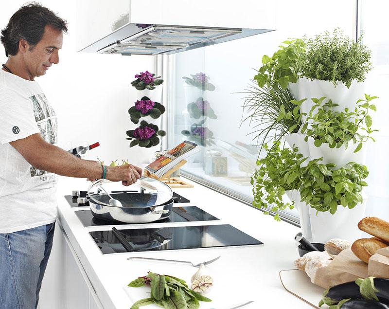 Örtodling i kök med vertikalodling