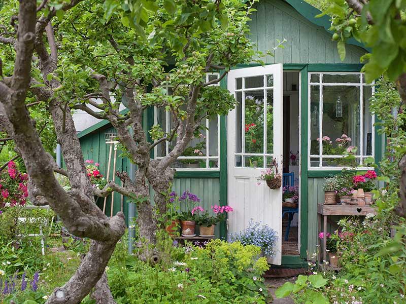 Koloniträdgård som grön trend 2022