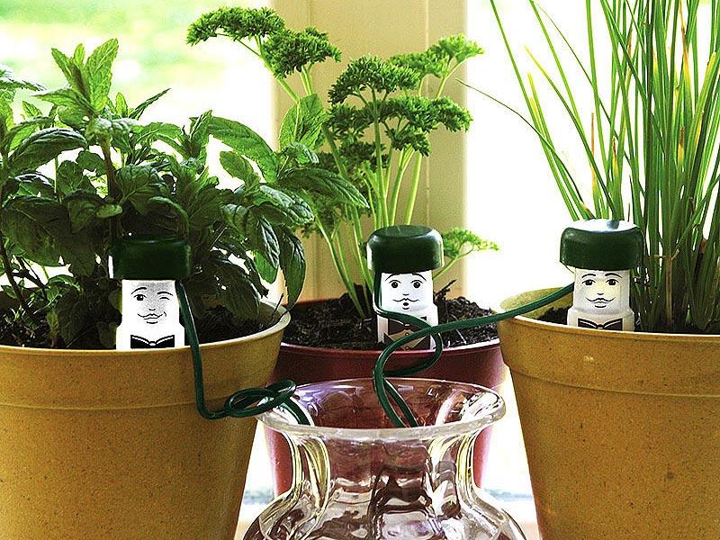 Krukväxter vattnas med semestervattnare