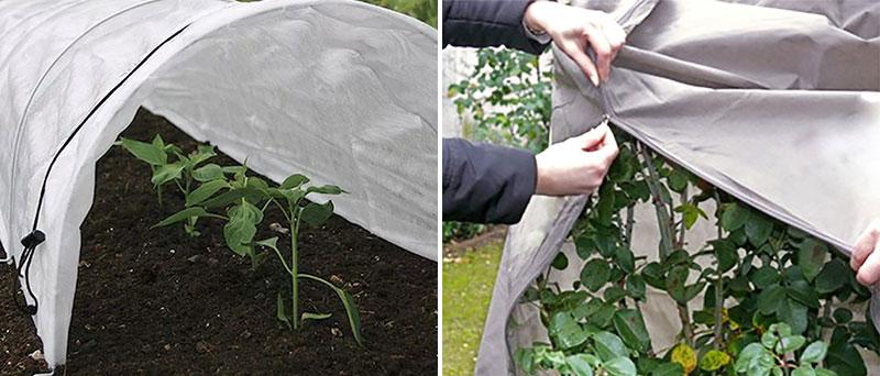 Täckning med fiberduk för minskad avdunstning och köldskydd