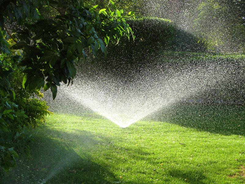 Bevattning av gräsmatta med spridare i trädgård