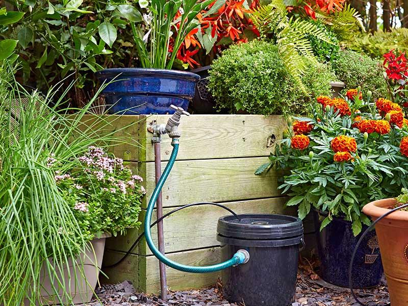 Vattenmagasin i trädgård med solcellsbevattning