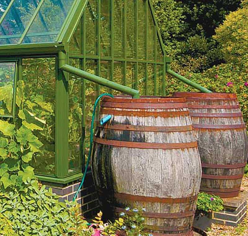 Vattensamling i tunna i växthus