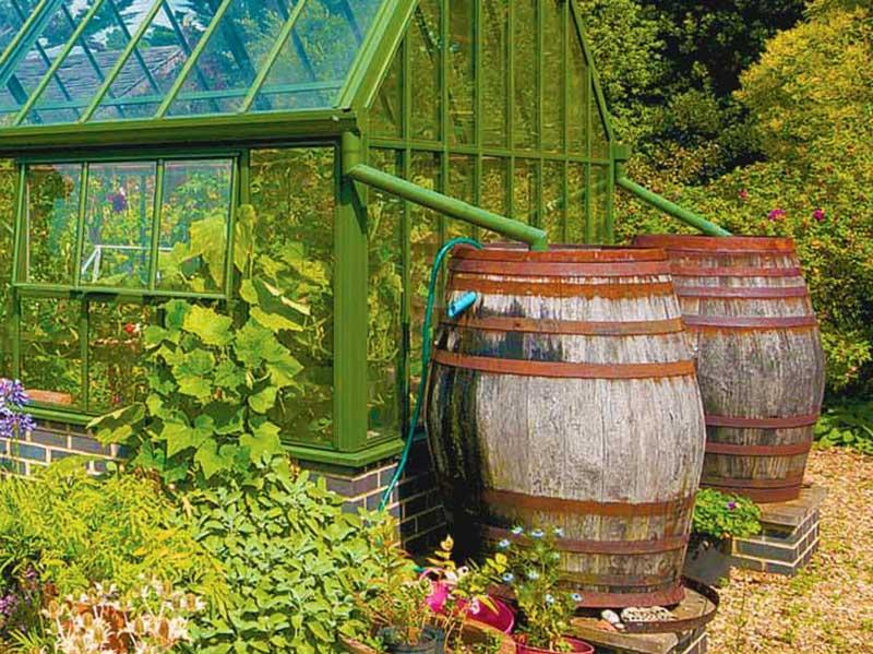 Insamling av regnvatten från växthus i tunna