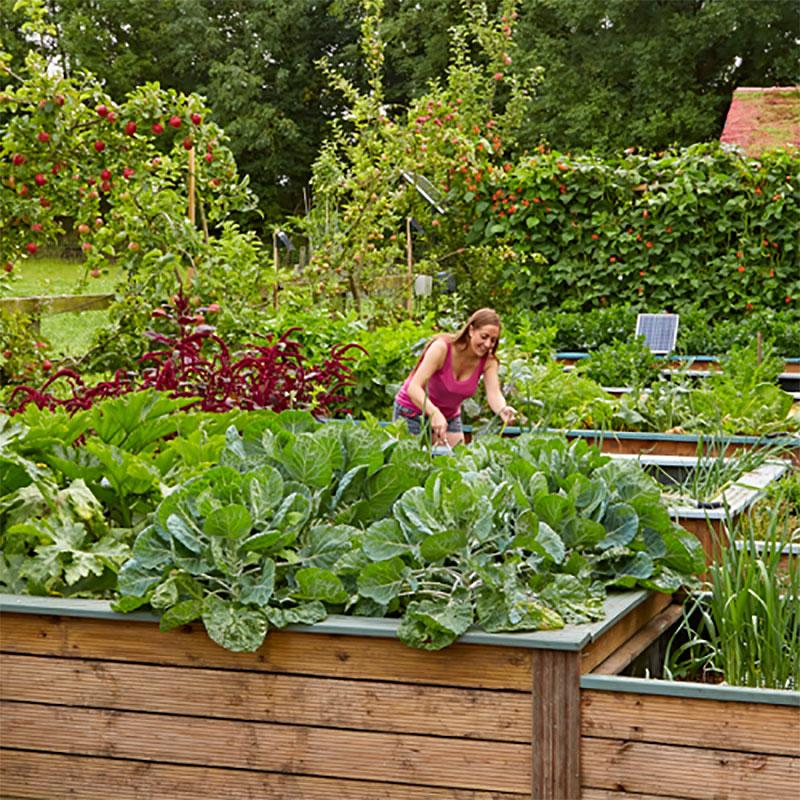 Irrigatia c180 har kapacitet till stora köksträdgårdar