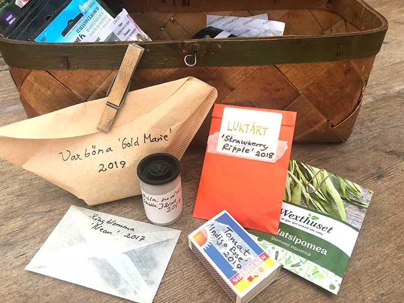 Olika sätt att lagra och förvara frön
