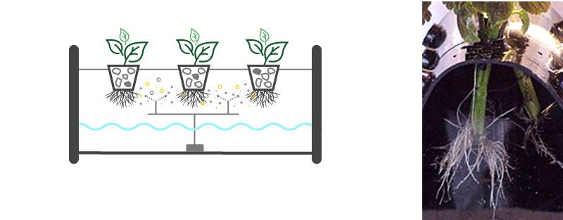 Hydrokultur med aeroponicsystem