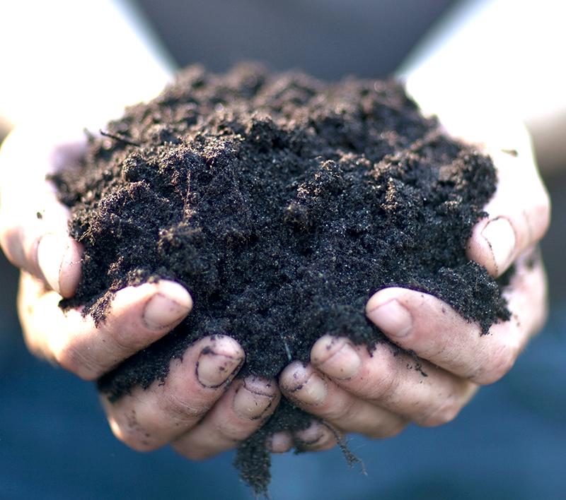 Jord för odling i kruka