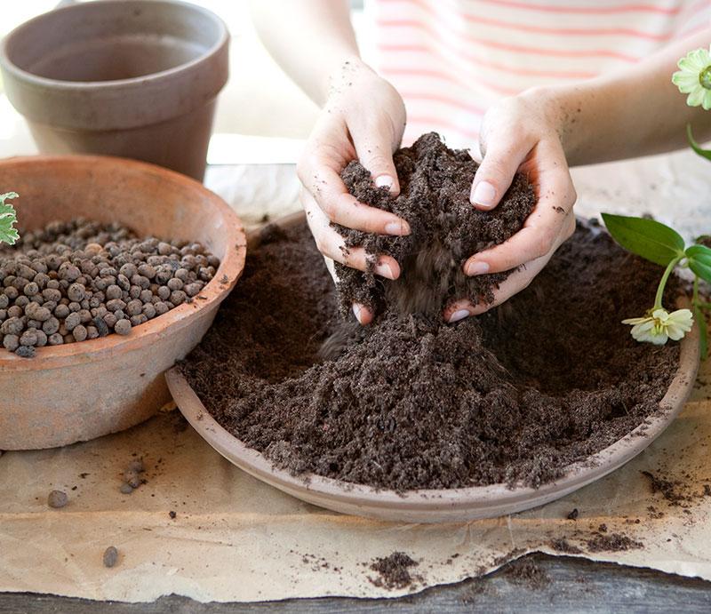 Planteringsjord för krukväxter