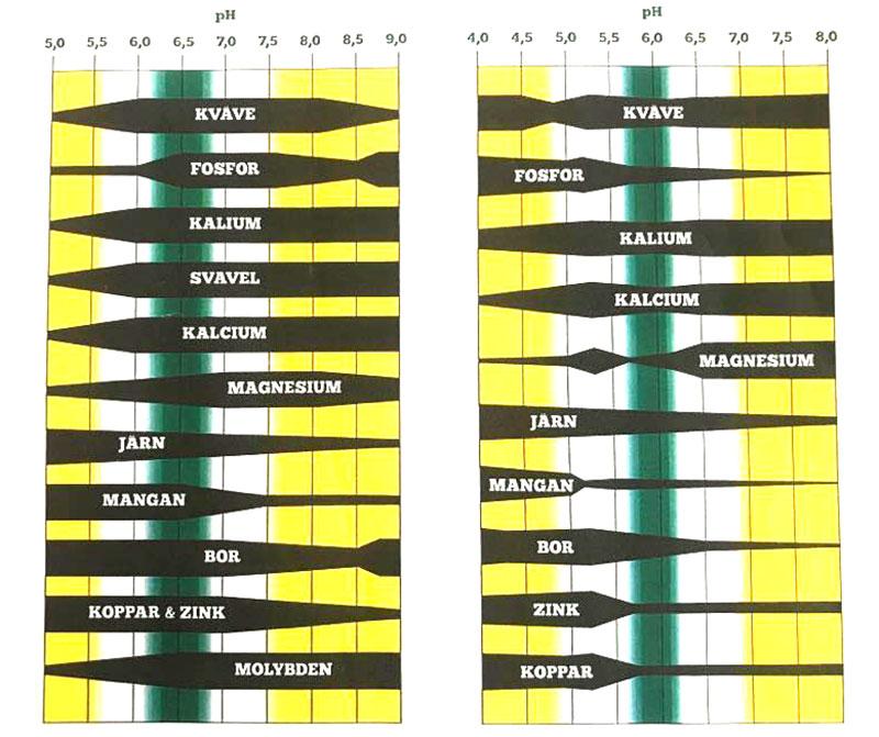 diagram som visar växtnäring som är tillgängliga för växter vid olika ph i jord och vatten