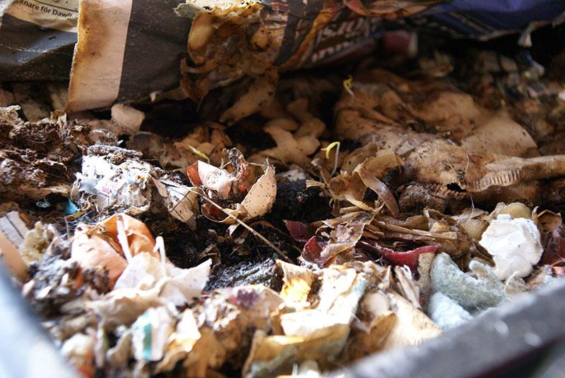 Blandning av skal, matavfall, strö och papper i maskkomposten