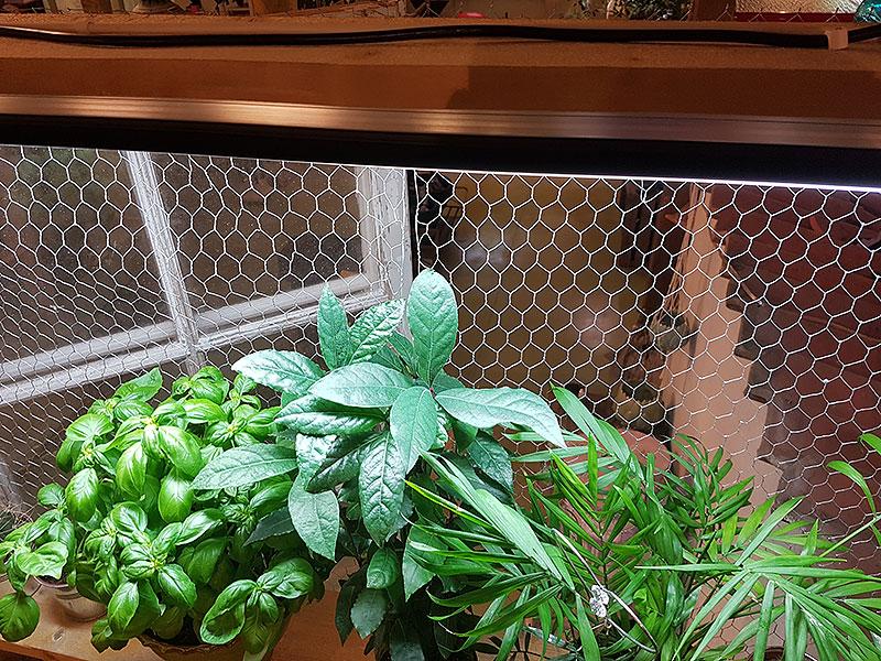 Växtbelysning lysrör med högreflekterande reflektor