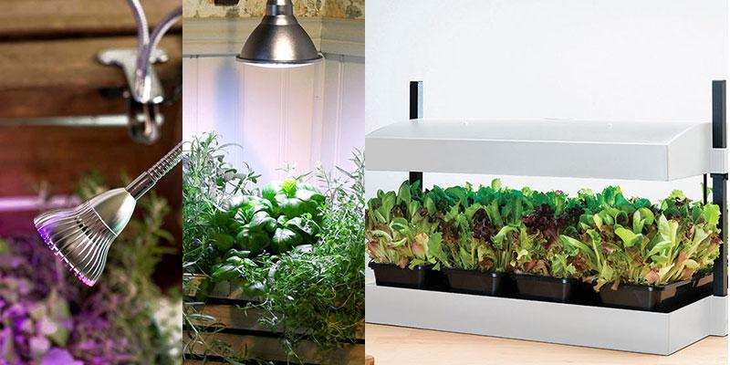 Olika växxtlampor till odling inomhus