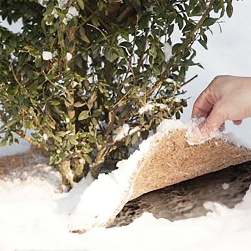 Kokosmatta för vinterskydd av plantering