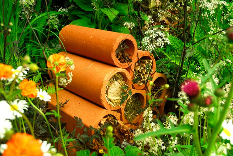 Gömsle för nyttodjur insekter i trädgård