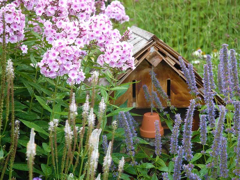 Naturvänlig och hållbar trädgårdar nyttodjur