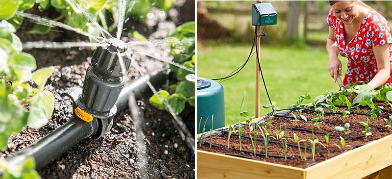 Bevattning i köksträdgård med solceller Irrigatia och automatisk bevattning