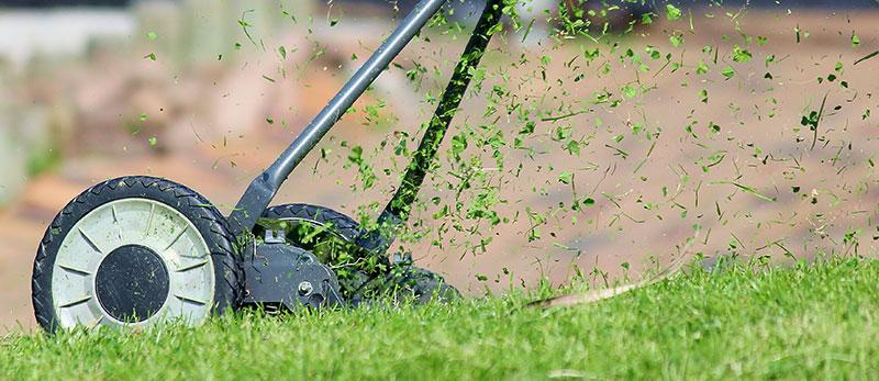 Klippning av gräsmatta med handjagare