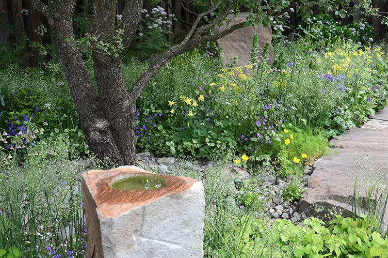 Naturvänlig trädgård med vatten, träd och blommor