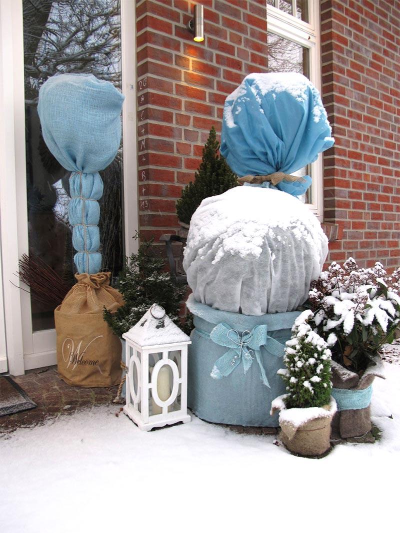 Fiberduk skyddar känsliga växter i kylan