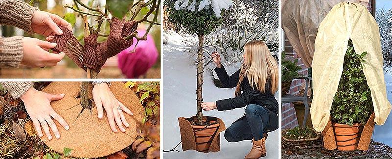 Stamskydd, kronskydd, rotskydd och värmare för känsliga växter