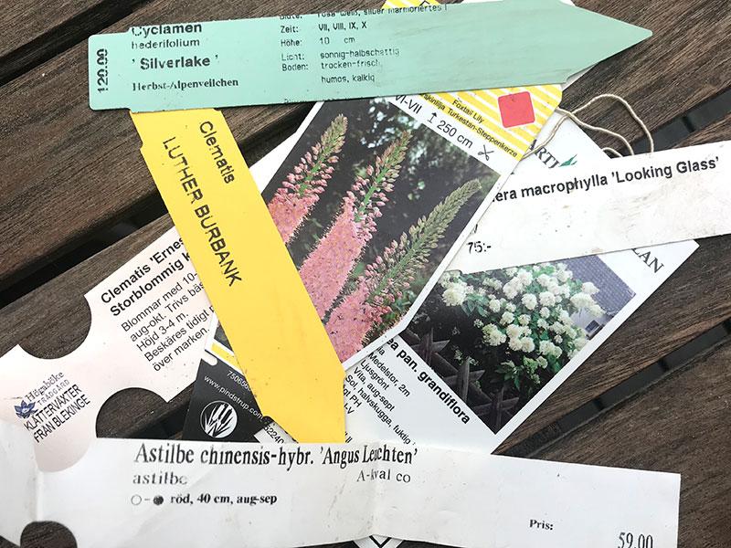 Etiketter på växter i plantskolan