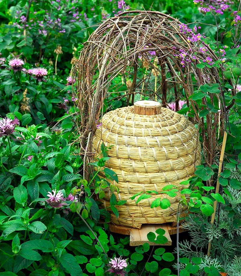 Bikupa för pollinering