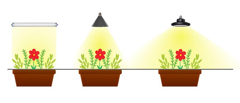 Olika lamptyper för LED växtbelysning