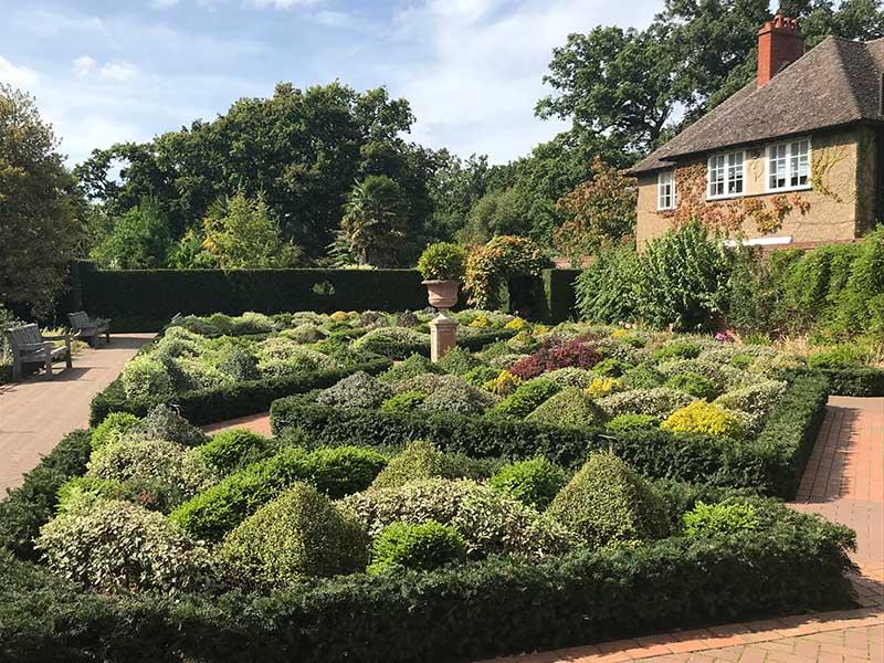 Wisely garden med vintergrön topiary