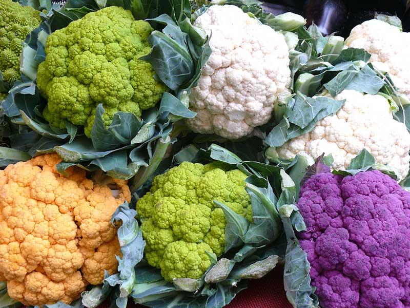 Olika färger av blomkål, lila, lime, orange, vit