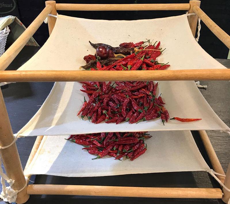 torkning av chilifrukter i örttork