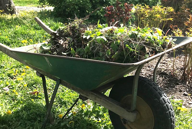 Växtrens till kompost och pallkrage