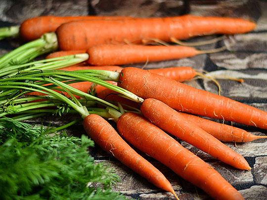 Nyskördade morötter med blast