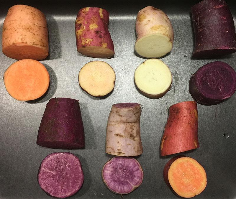 olika sorter av sötpotatis med olika färger