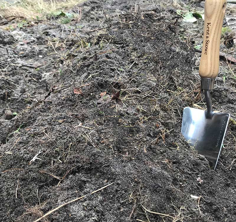 Plantering-sparris-plantor