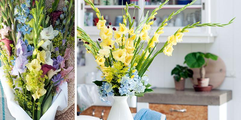 gladiolus I bukett som snittblomma