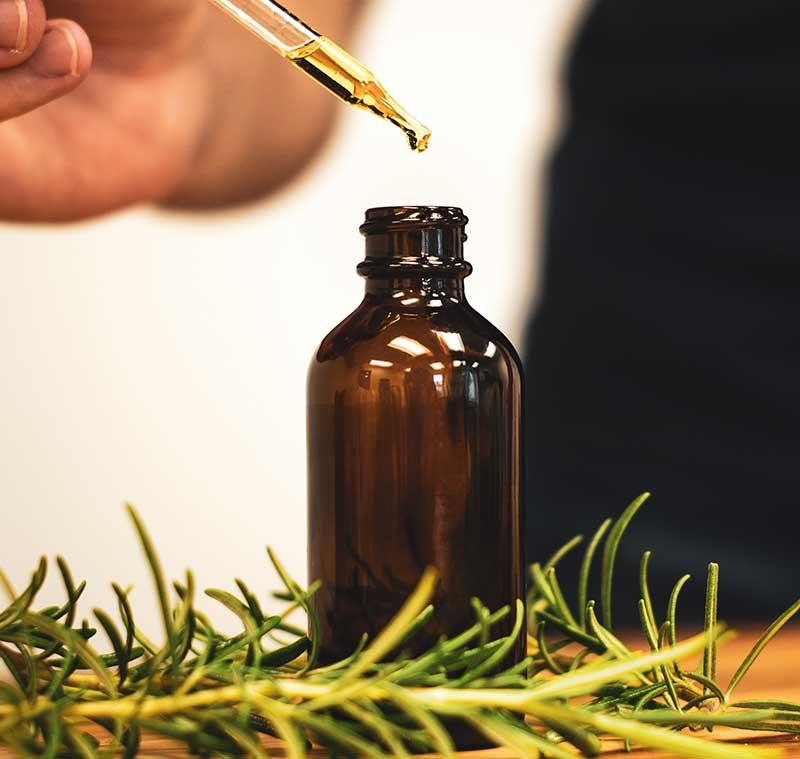 Rosmarin olja medicinalväxt tinktur