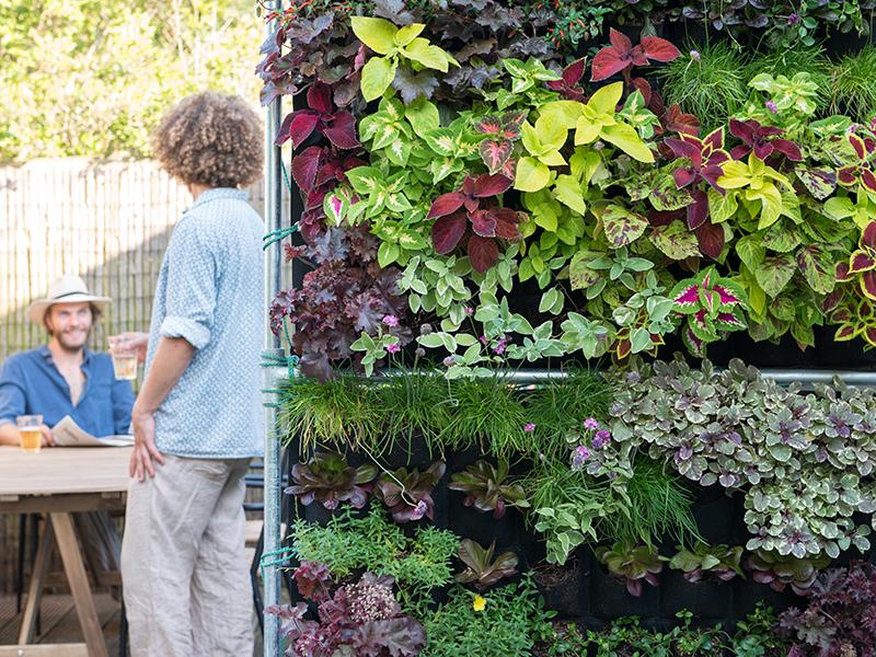 Grön växtvägg på balkong
