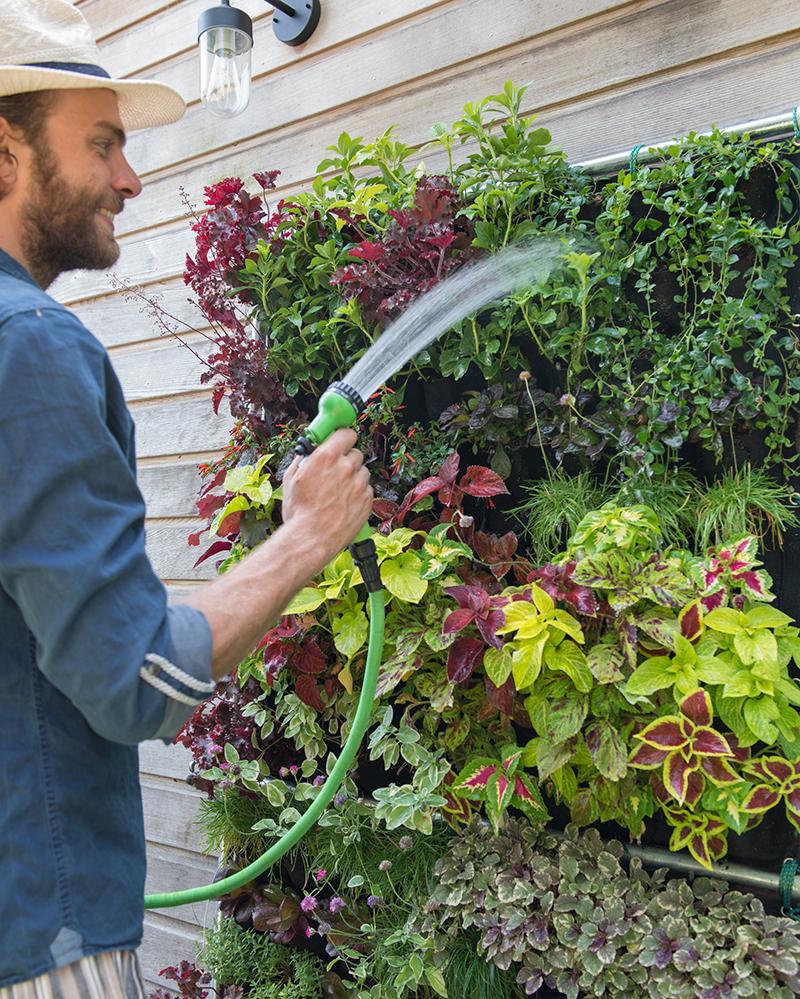 Vattning av växtvägg med perenner