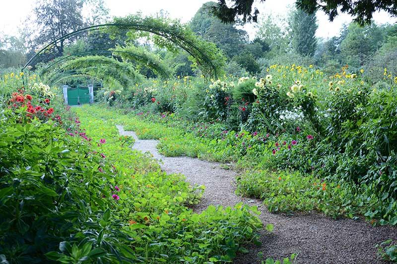 Krassegången i Monets trädgård Giverny