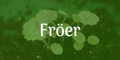 Fröer