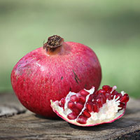 Frukt granatäpple