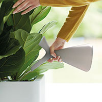 Ljusgrå design-vattenkanna 'Plunge'