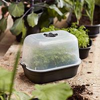 Litet minidrivhus Green Basic Grow