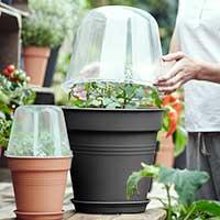 MIniväxthus, Green Basics, svart, 30 cm