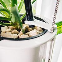 Nutritower odlingstorn, hydrokultur