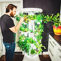 Nutritower odlingstorn i hemmet