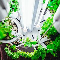 Nutritower odlingstorn med T5-lysrör