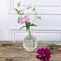 Minivas i klarglas med sommarmalva