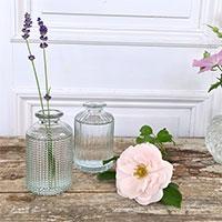 Minivaser i klarglas